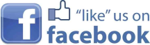 FB like logo 2